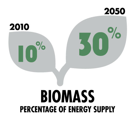 biomass-percentage-energy-supply